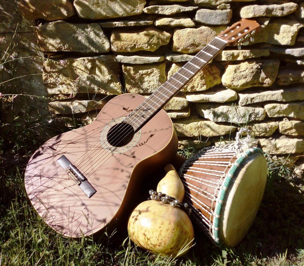 musicotherapie deroulement teresa pasqua instruments